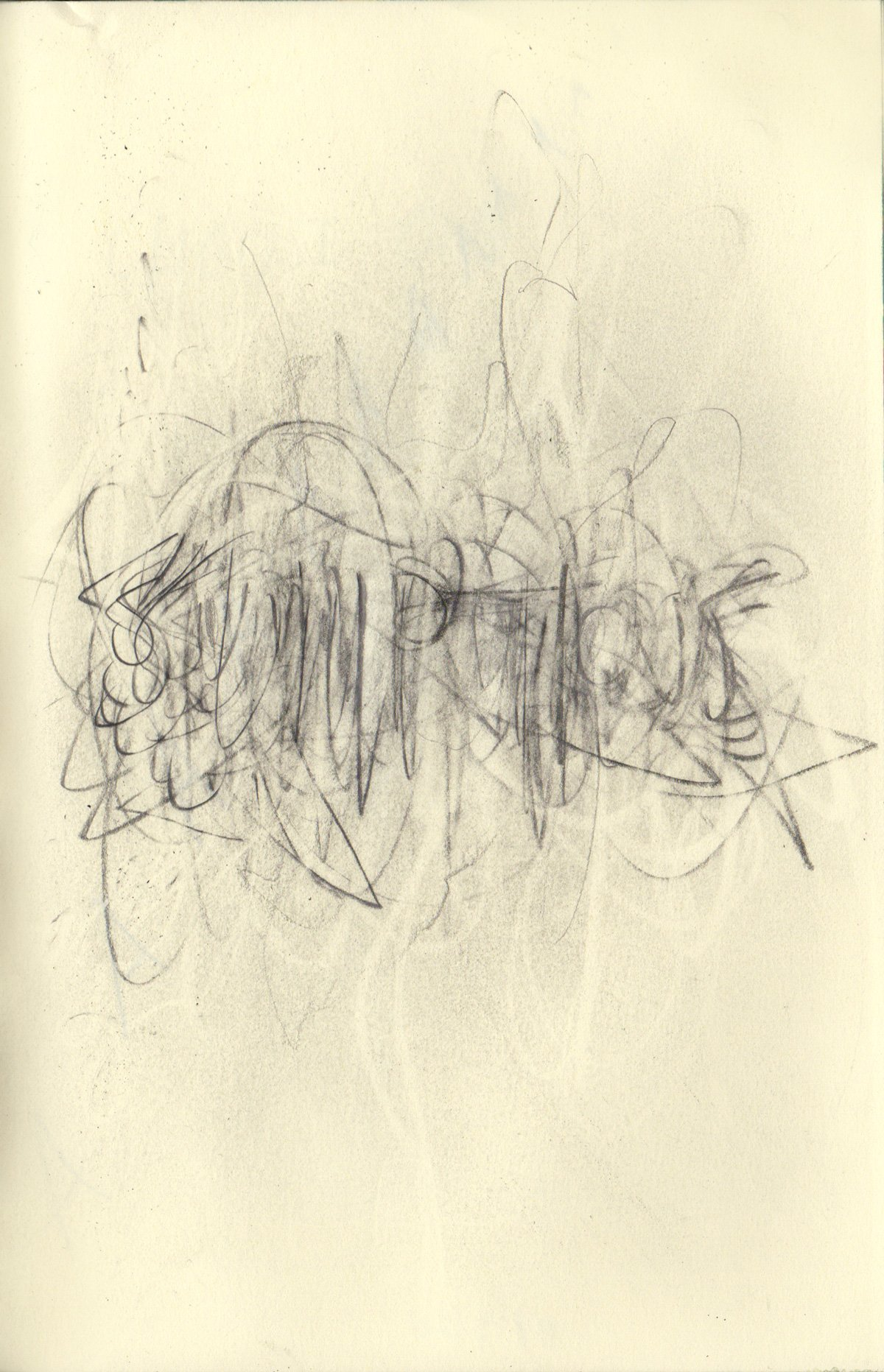 """SUMPTIOUS 5.5 x 8.25"""" 2020 Pencil on Sketchbook Pages"""